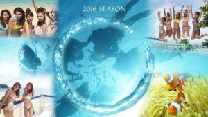 2016年シーズン