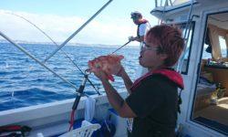 沖縄の沖釣りでジセイミーバイ(アザハタ)が釣れました。
