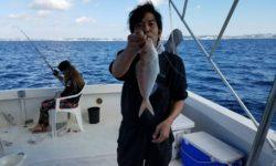 美味しそうな赤い魚が釣れました。